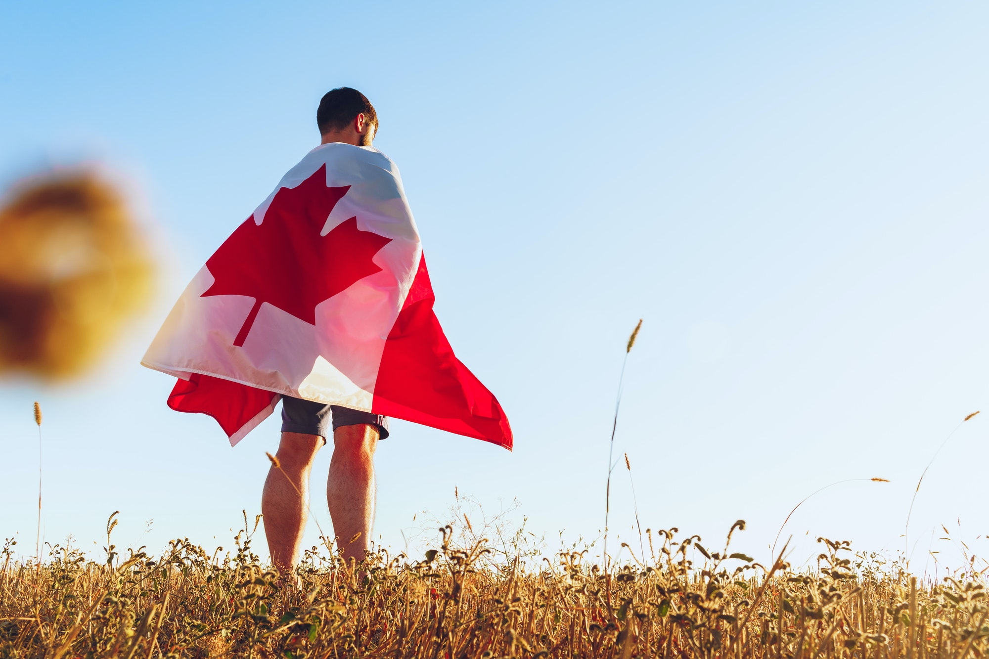 Canada the land of the free: Zero Prosecutions from CRA Audits